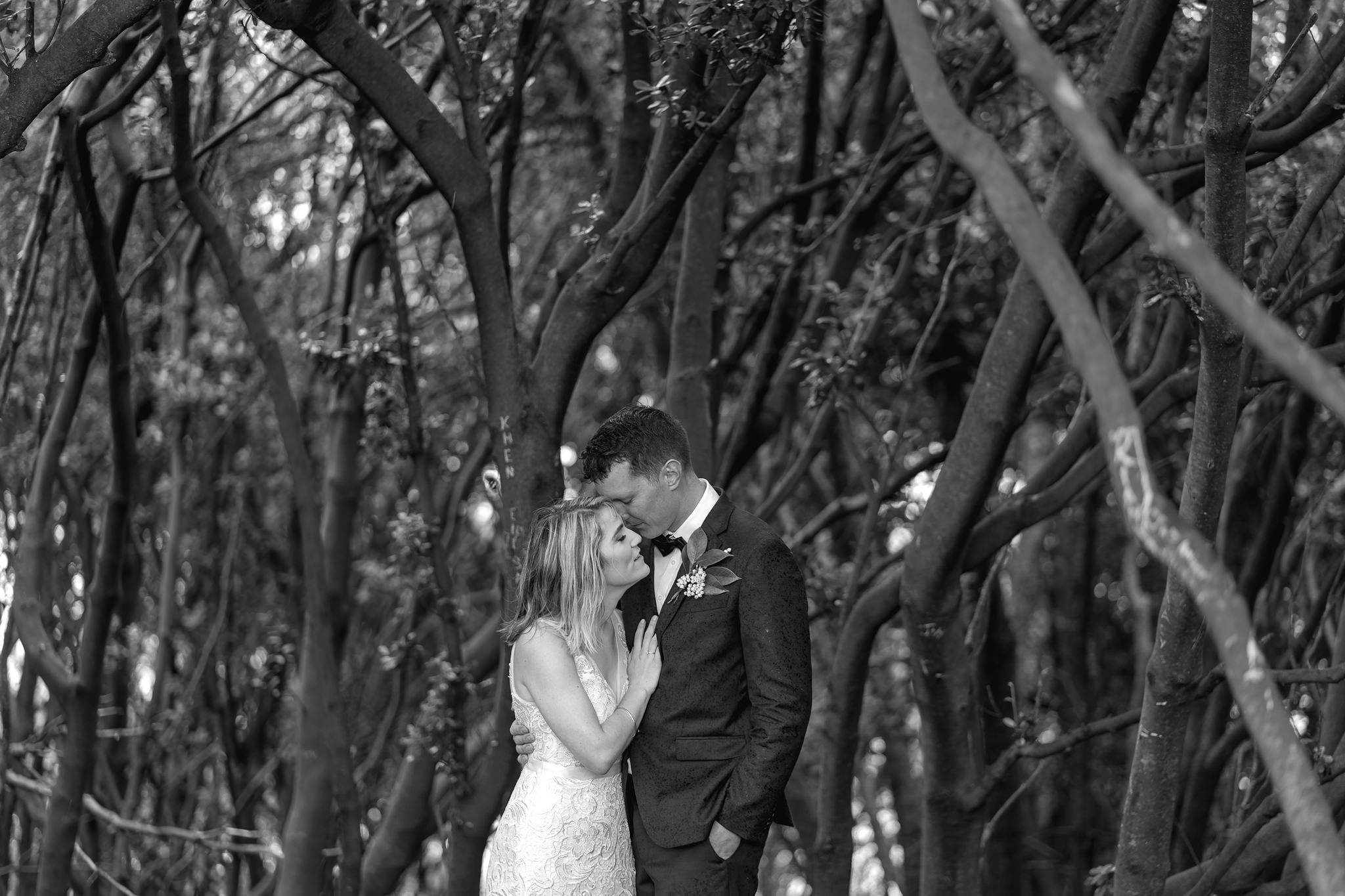 newfound-s-a-tauranga-new-zealand-wedding-photography-280