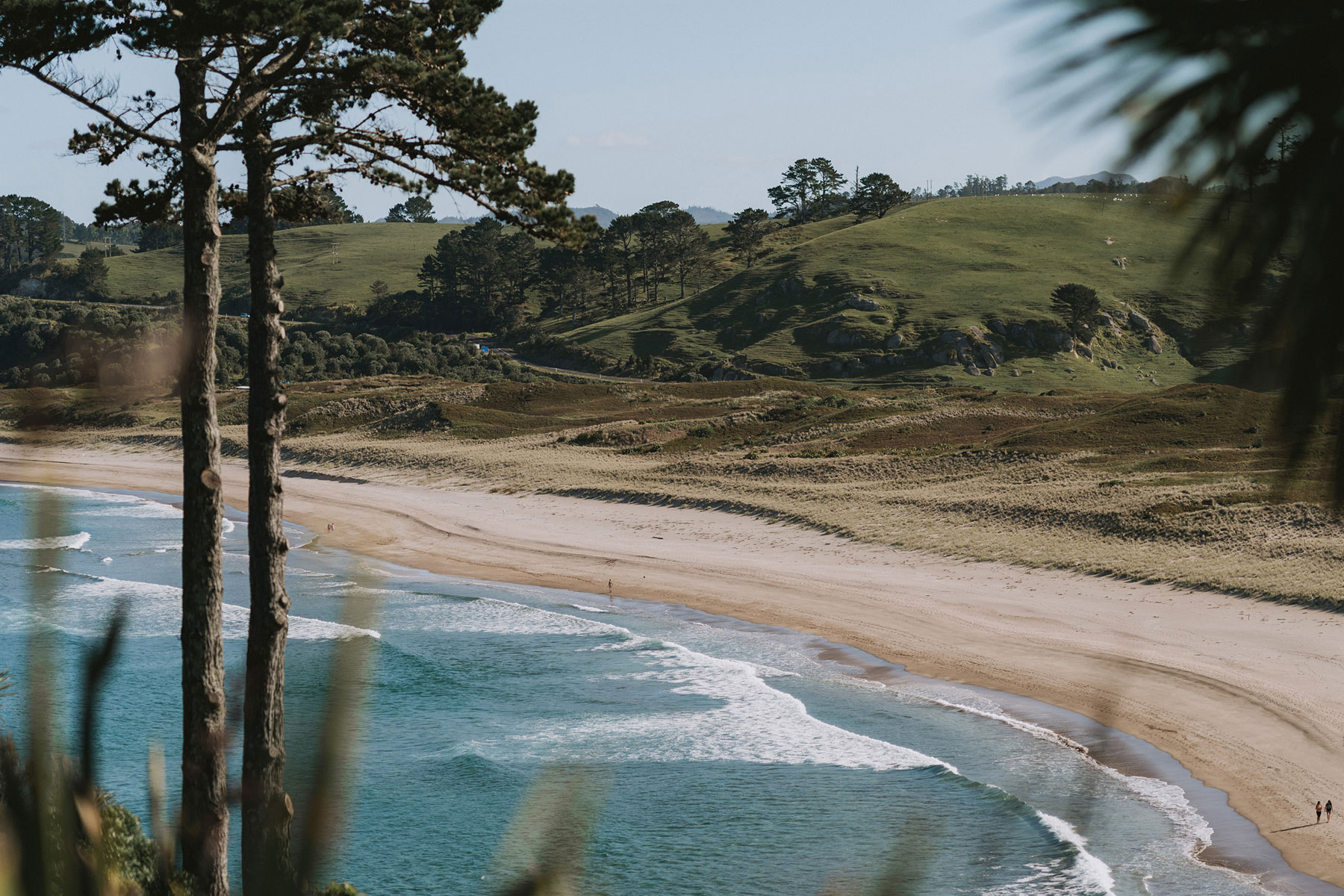 newfound-j-n-orua-beach-house-coromandel-wedding-photographers-2