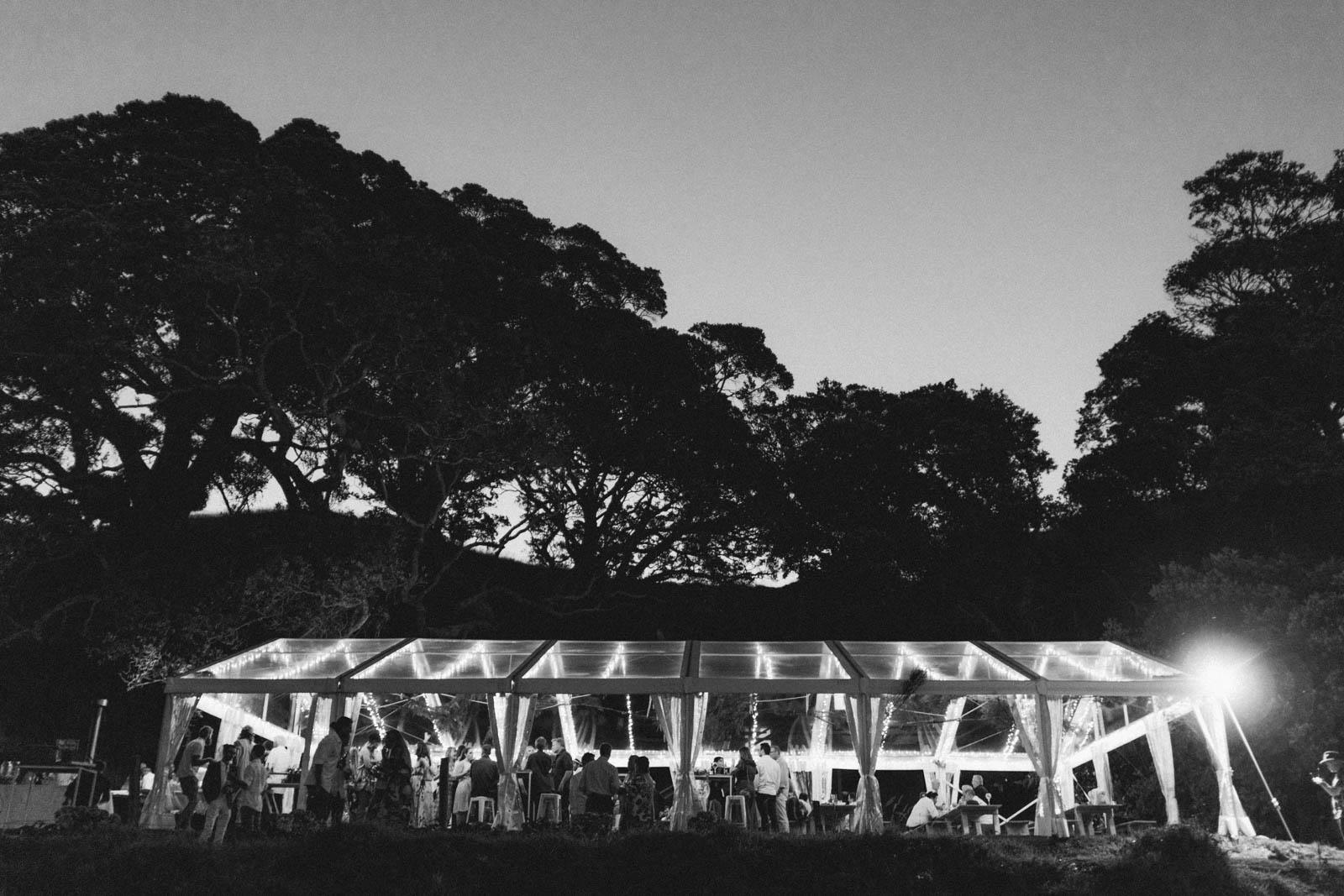 newfound-l-i-coromandel-wedding-photographer-2047-A9_05977